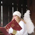 Adliswiler Weihnachtskalender